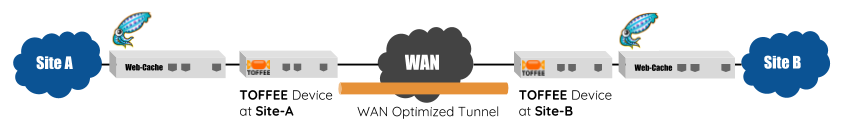 TOFFEE WAN Optimization with Squid Cache Proxy topology