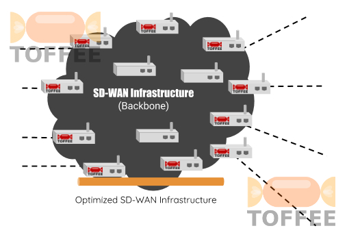 TOFFEE-DataCenter WAN Optimization within SD-WAN Infrastructure